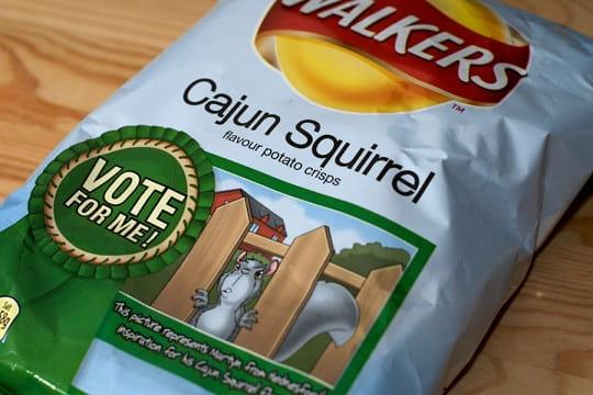 Walkers Cajun Squirrel