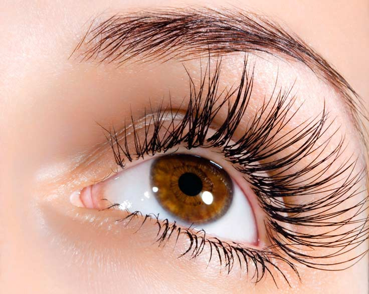 Eyebrow-Treatment