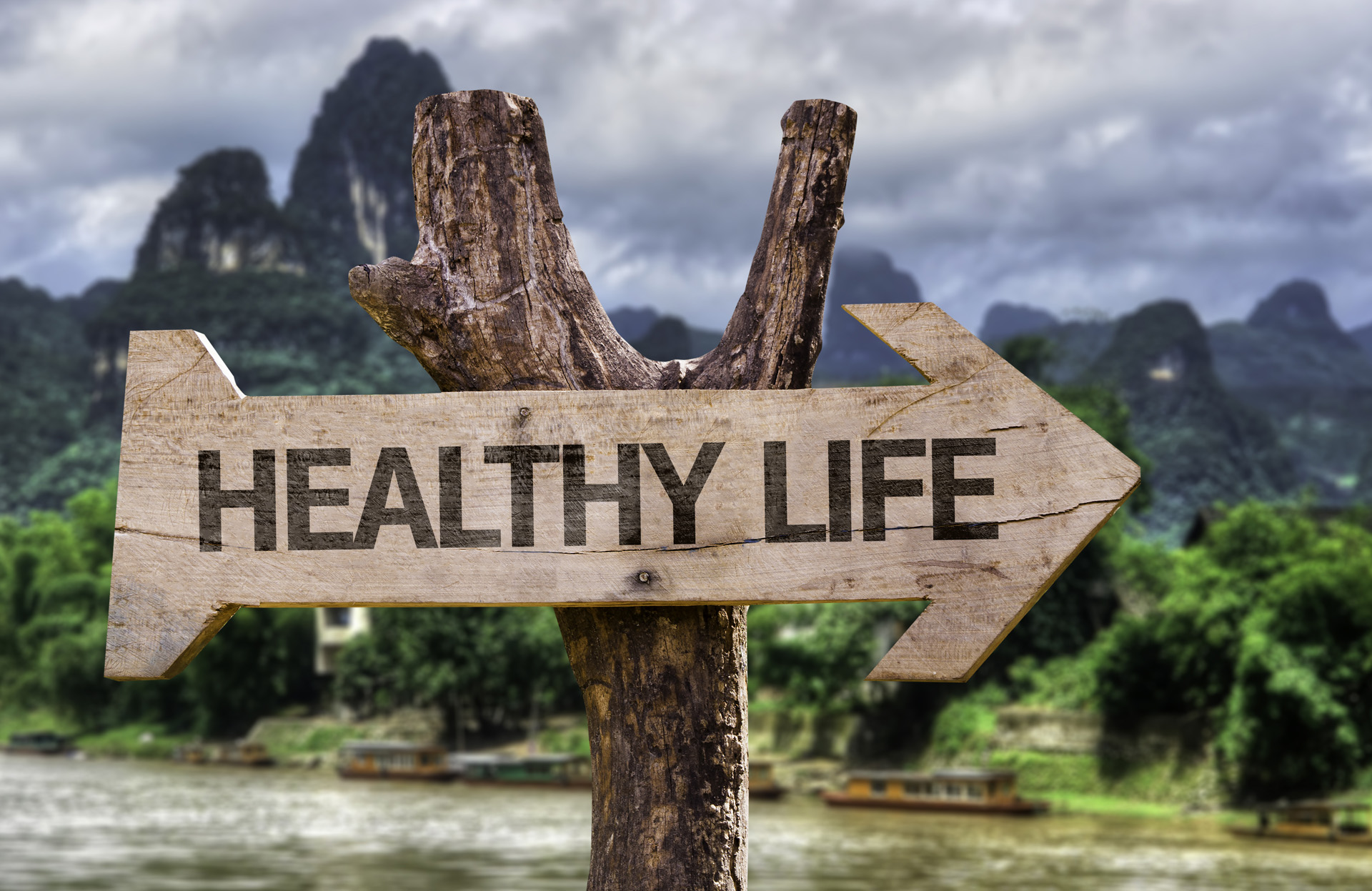 Healthy Life Wooden Sign With A Forest Background
