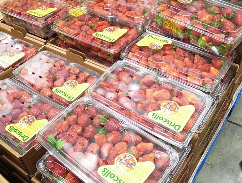 Don't Buy Fresh Fruits And Veggies