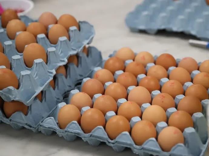 Buy Fresh Eggs