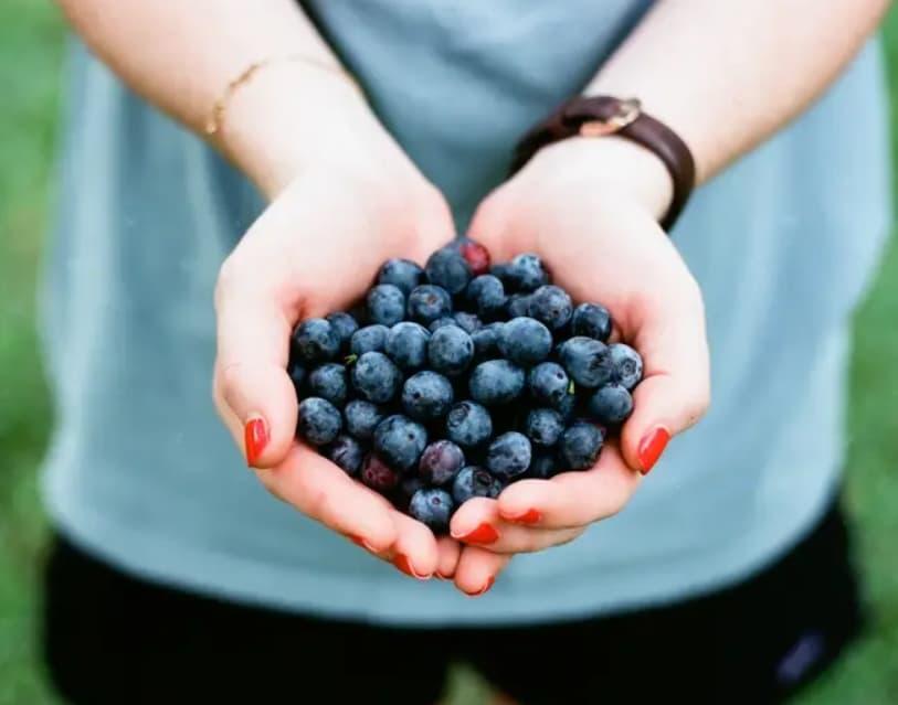 Buy Organic Berries
